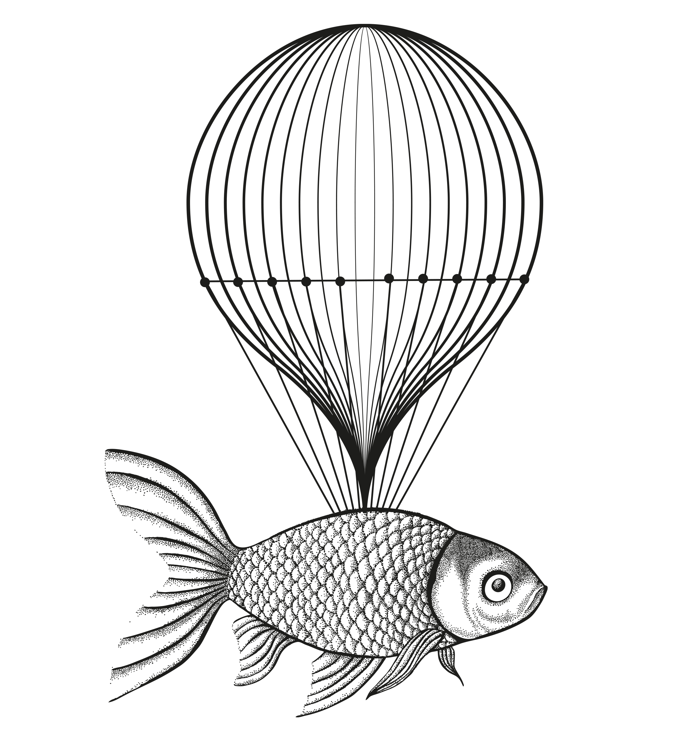 flying_fish