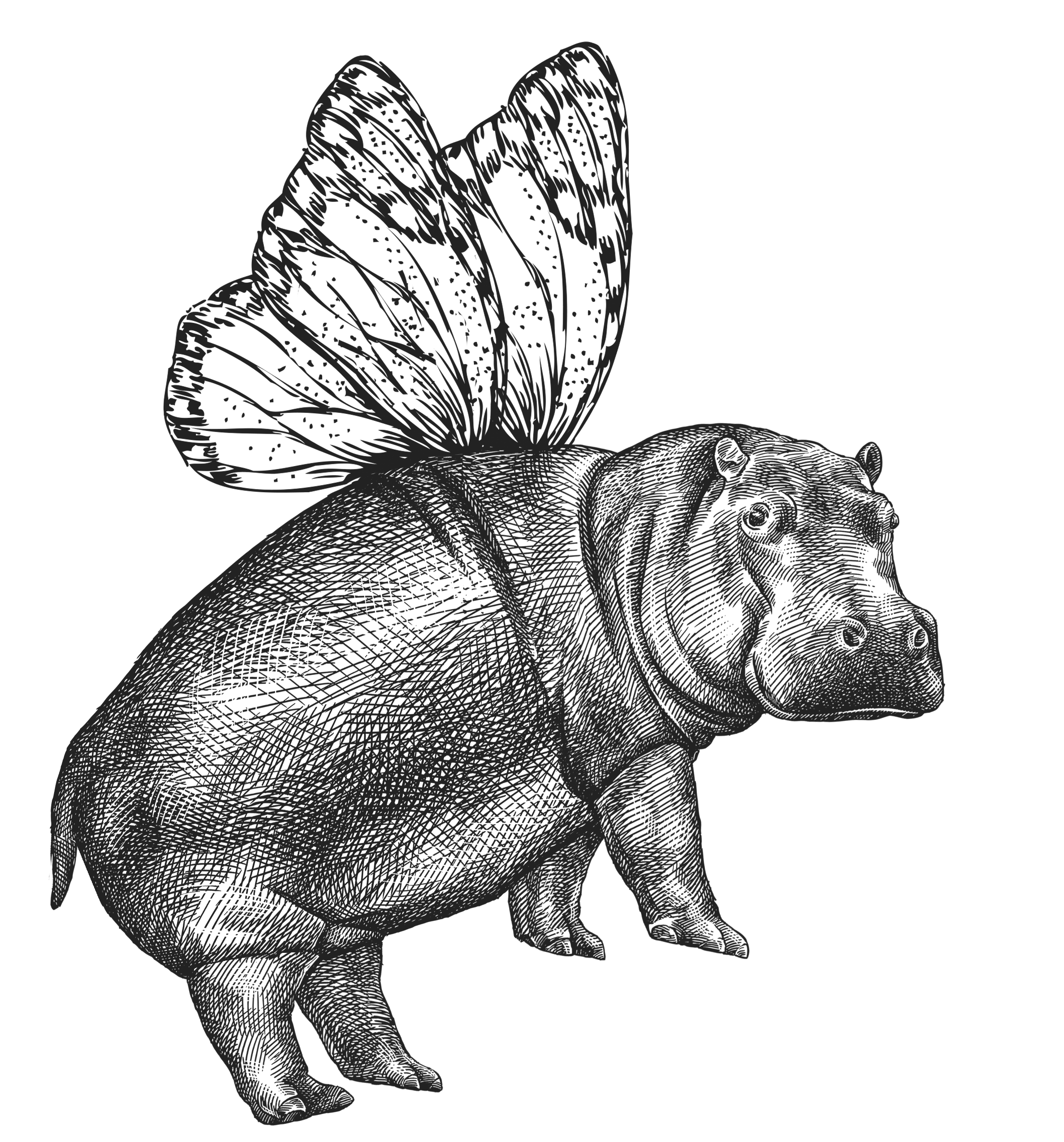 flying_hippo